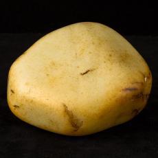 新疆和田玉黄皮白玉籽玉原石 2.2公斤